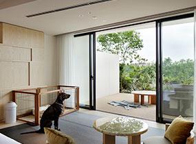 Dog-friendly Room